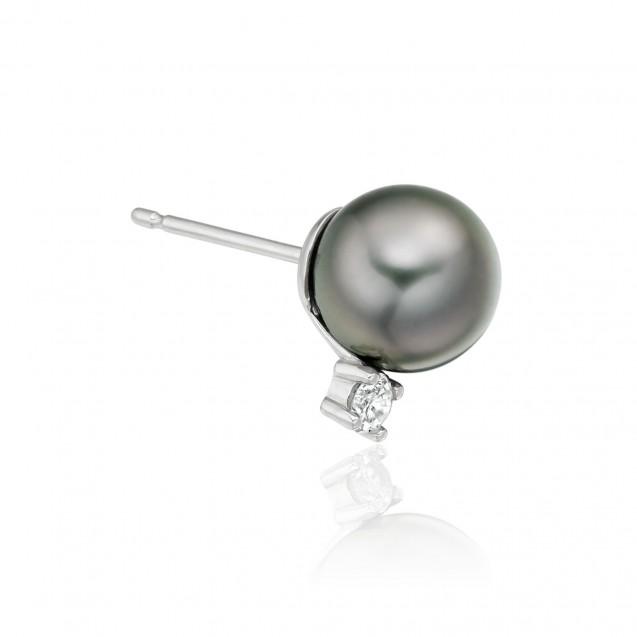 Tehitian Pearl Earring Made In14K White Gold